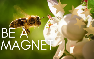 Be a Magnet